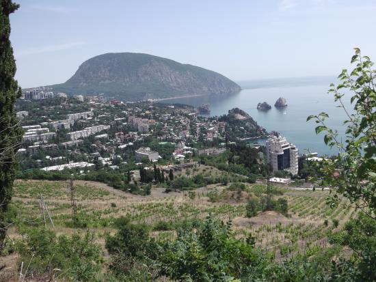 Прокат  автобуса в Крым