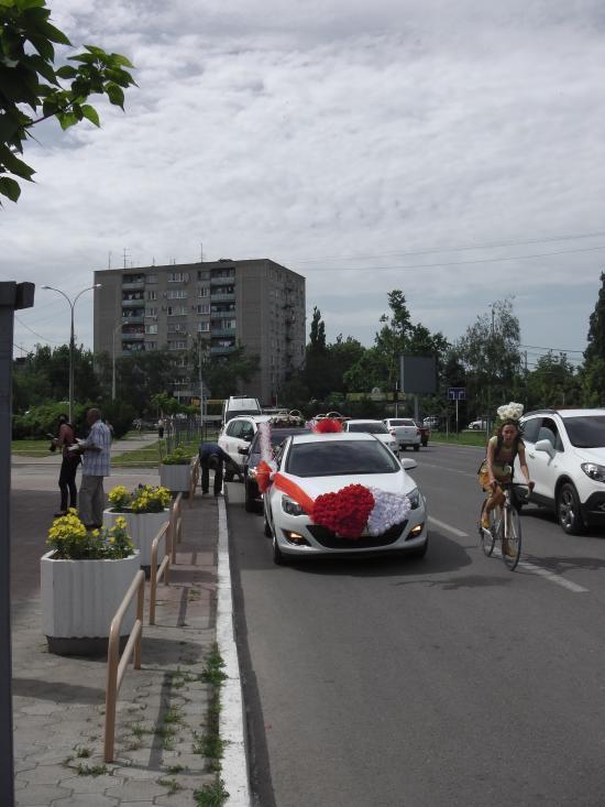 Прокат автобуса в Краснодаре